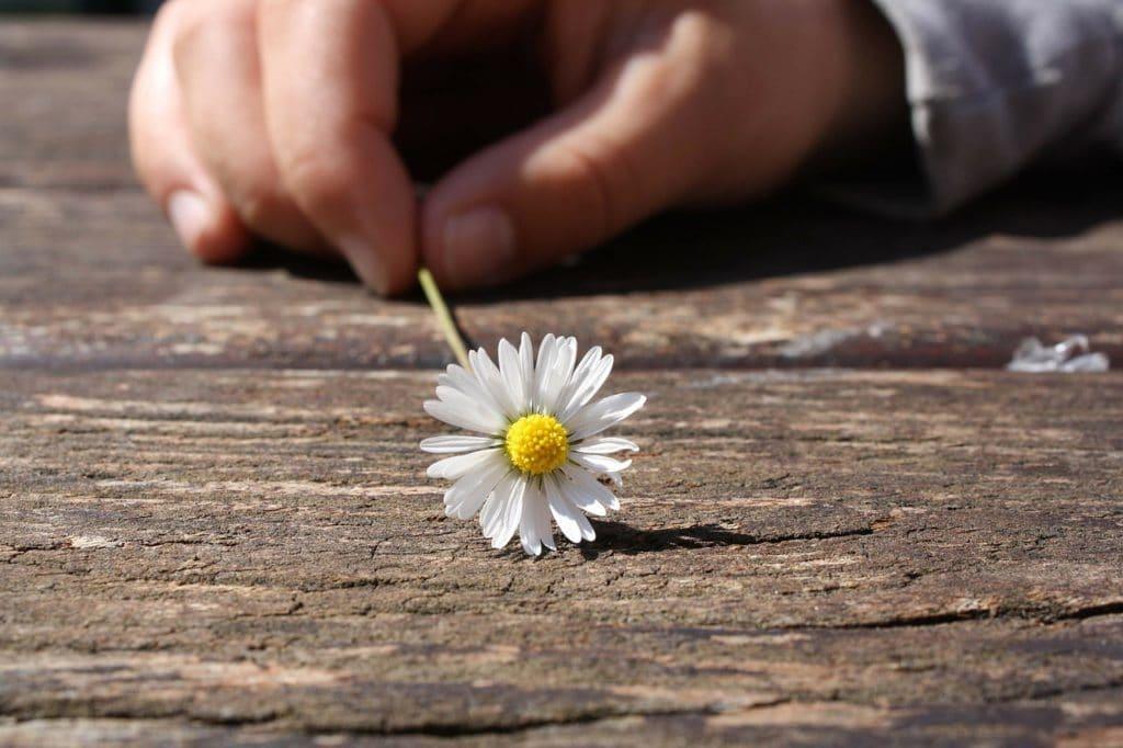 einfach freundlicher sein, mehr lächeln, komplimente machen, ein like geben, kristin reinbach, the club of happy lifepreneurs