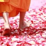 Dalai Lama Weisheiten Mönch Leben Sinn